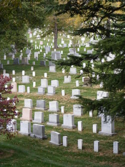 Arlington Cemetery 6